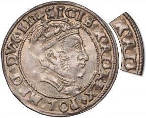Zygmunt II August, Grosz na stopę litewską 1546 - błąd AVGG (RRR)
