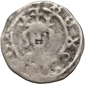Kazimierz III Wielki, Denar Kraków bez daty - Orzeł w lewo