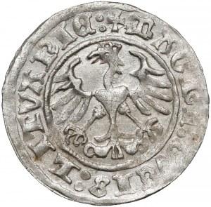 Zygmunt I Stary, Półgrosz Wilno 1511 - piękny