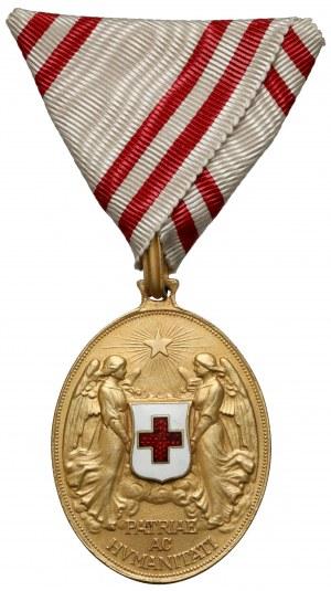Medal Zasługi dla Czerwonego Krzyża, Brązowy