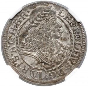 Śląsk, Leopold I, Wrocław, 6 krajcarów 1673 SHS - NGC MS62