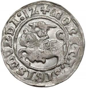 Zygmunt I Stary, Półgrosz Wilno 1512 - piękny
