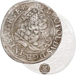 Śląsk, Leopold I, Brzeg, 6 krajcarów 1677 CB - z herbem - RZADKIE