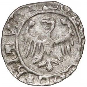 Ks. Bytomskie, Eufemia lub synowie (1431-1452) Halerz Bytom - górnik