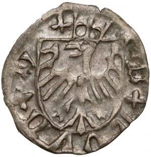 Ks. Cieszyńskie, Kazimierz II (1460-1528) Halerz Cieszyn - ukoronowane T