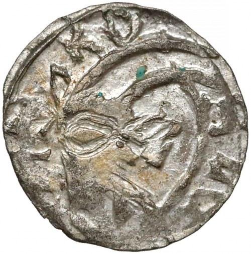 Ks. Kozielskie, Konrad V i VII (1416-1439) Halerz Koźle - głowa Kozła - piękny