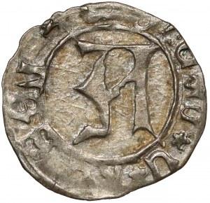 Ks. Kozielskie, Konrad VII Biały (1416-1450) Halerz Koźle - litera A - piękny
