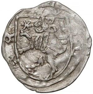 Ks. Opawskie, Wacław II, Mikołaj V... (1433-1456) Halerz Opawa - tarcze