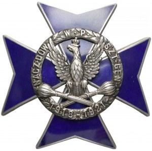 Odznaka, Naczelne Dowództwo Wojska Polskiego (1919)