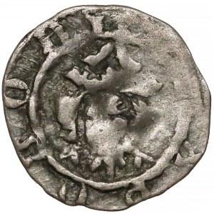 Kazimierz III Wielki, Denar Kraków bez daty - Orzeł w prawo