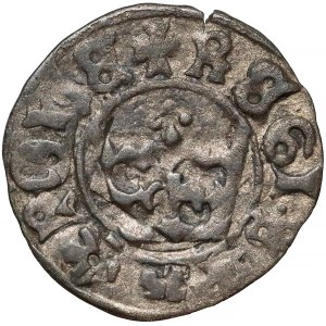Jan Olbracht, Falsyfikat z epoki Półgrosza koronnego