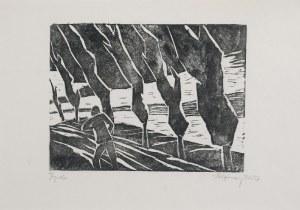 Stefan SZMAJ (1893-1970), Topole III, 1957