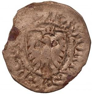 Kazimierz IV Jagiellończyk (1446-1492) - szeląg Gdańsk -