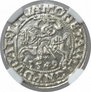 Zygmunt II August, Półgrosz 1549 Wilno