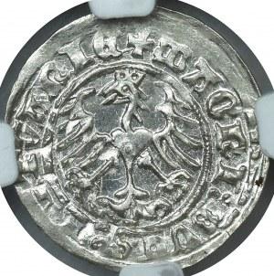 Zygmunt I Stary, Półgrosz 1512 Wilno