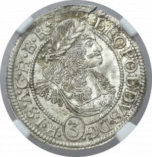 Śląsk, Leopold I, 3 Krajcary 1675 Opole