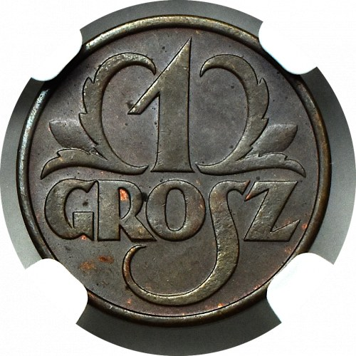 II Rzeczpospolita, 1 grosz 1930 - NGC MS64 BN