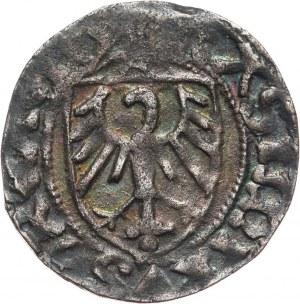 Kazimierz IV Jagiellończyk 1446-1492, szeląg, Gdańsk