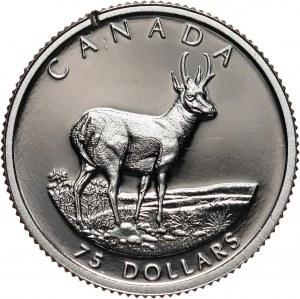 Kanada, Elżbieta II, 75 dolarów 2000, widłoróg amerykański