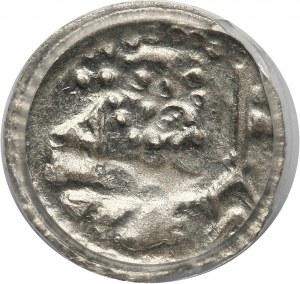 Śląsk, Księstwo Legnicko-Brzeskie, halerz 1425-1448, Legnica