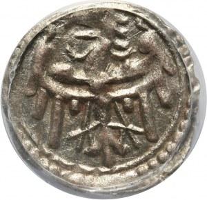 Śląsk, Głogów-miasto, halerz (ok. 1500 roku), Głogów
