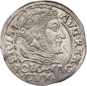 Zygmunt II August, grosz litewski na stopę polską 1548, Wilno