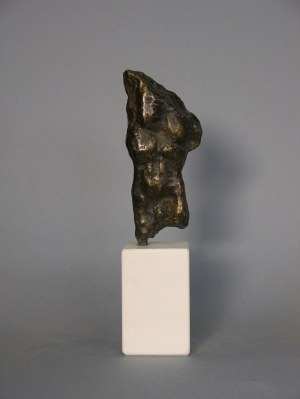 Waldemar Mazurek, 1961, Tors, 2017