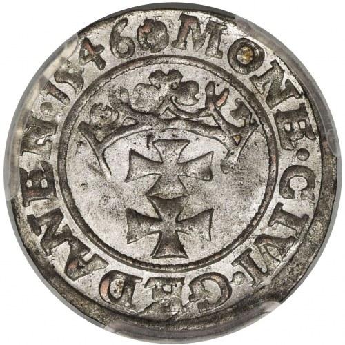 Zygmunt I Stary, Szeląg Gdańsk 1546 - PCGS MS63 - pokazowy egzemplarz