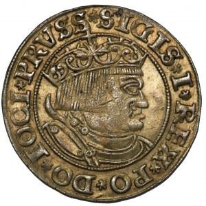 Zygmunt I Stary, Grosz Toruń 1532 - szerokie popiersie