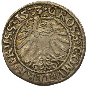 Zygmunt I Stary, Grosz Toruń 1533