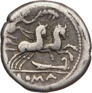Republika Rzymska, M. Cipius M. f. 115/114 p.n.e, denar