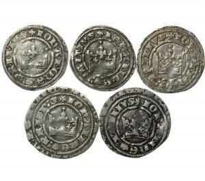 grosze praskie, Jan I (1310-1346), zestaw 5 sztuk