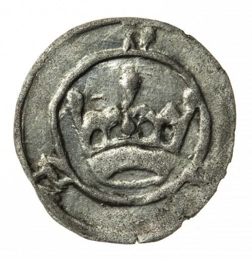 halerz, Namysłów, Zygmunt Luksemburczyk (1419-1437)