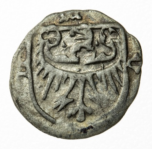 halerz, Oleśnica, Konrad VII Biały (1416-1444/1447)