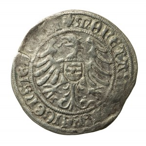biały grosz, Albrecht i Karol I