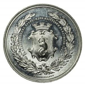 Wystawa Rolniczo-Przemysłowa w Warszawie, 1885, medal