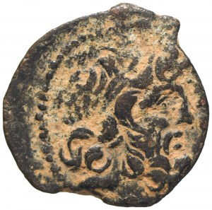 Seleukidzi, Demetriusz II Nikator, Ae-17