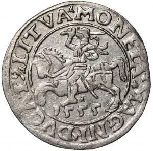 Zygmunt II August, Półgrosz 1555 Wilno - LI/LITVA