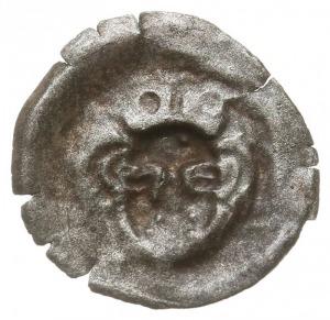 Gryfia, brakteat XIV w., Głowa w koronie na wprost, Dbg...
