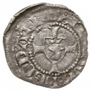 Szczecin, wit XIV/XV w., Aw: Głowa orła w koronie w lew...