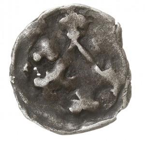 Brandenburgia, denar (vinkenauge), 3. ćwierć XIV w., Aw...