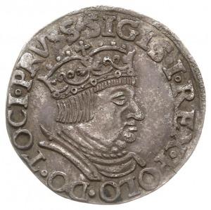 trojak 1536, Gdańsk, odmiana z węższą głową króla, Iger...