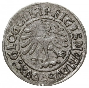 grosz bez daty, Głogów, moneta królewicza Zygmunta jako...