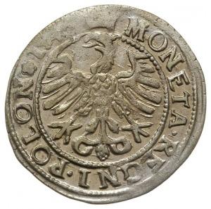 grosz 1546, Kraków, rzadsza odmiana z końcówka napisu P...