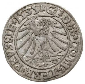 grosz 1535, Toruń, duże popiersie króla, PN.13-Dut.113