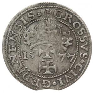 """grosz oblężniczy 1577, Gdańsk, odmiana bez """"kawki"""", na ..."""