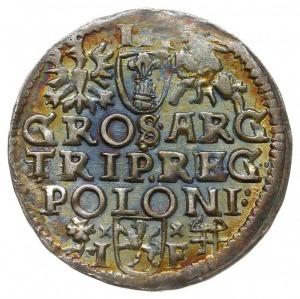 trojak 1595, Wschowa, Iger W.95.6.a - podobny, ciekawa ...