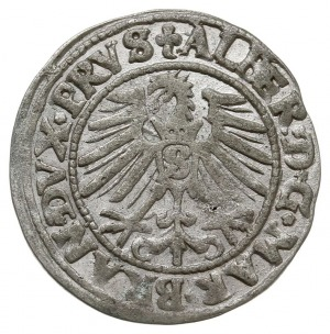 grosz 1548, Królewiec, Bahrf. 1205, Vossberg 1399, na a...