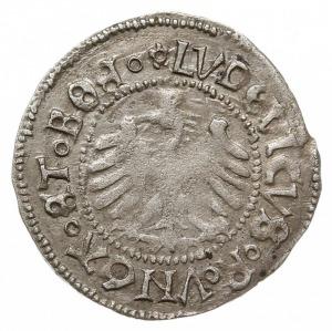 półgrosz, 1518, Świdnica, Fbg. 364, lekko niedobity, al...