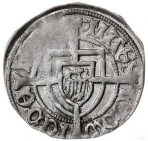 szeląg z koroną w polu tarczy, 1456-1460, mennica Króle...